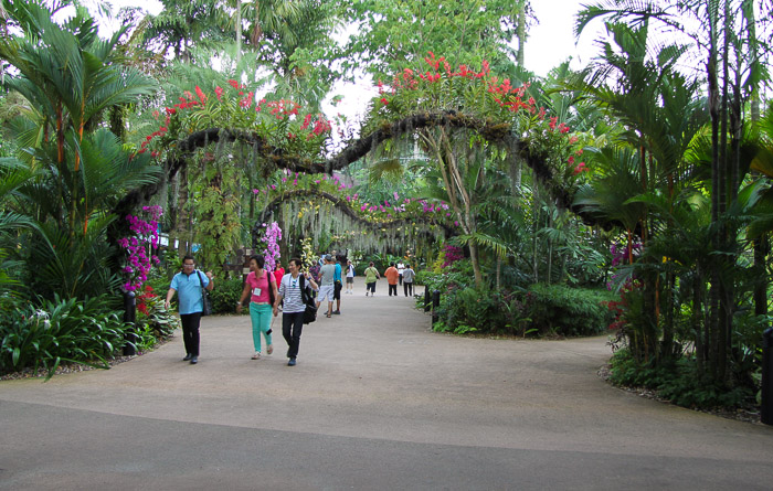 Jurong-Bird-Park-Orchid-Arches