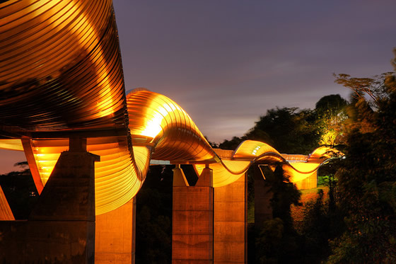 henderson_waves_bridge_2